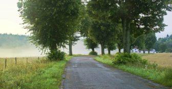 Droga Lokalna Polska