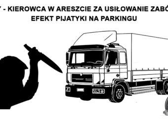 Niemcy – kierowca ciężarówki w areszcie za usiłowanie zabójstwa – efekt sobotniej pijatyki na parkingu.